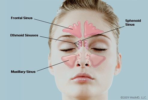 chiropractors treat sinus and ear pain