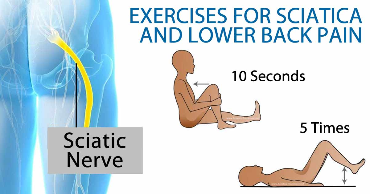 Exercises To Relieve Sciatica And Low Back Pain Favero