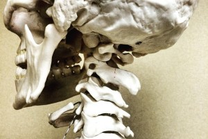 Favero Chiropractic can help your neck pain
