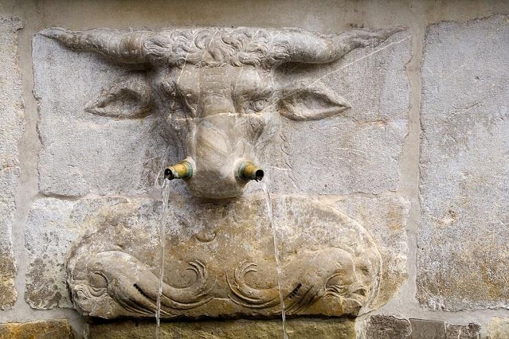 running nose, bull fountain
